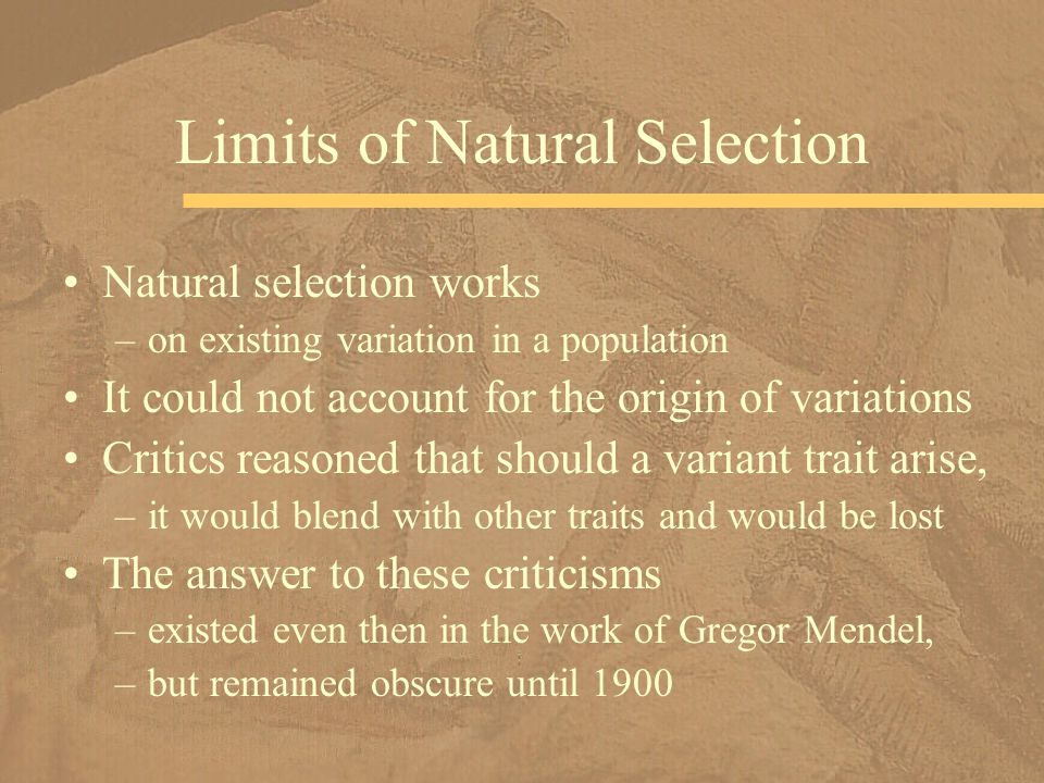 Limits of Natural Selection