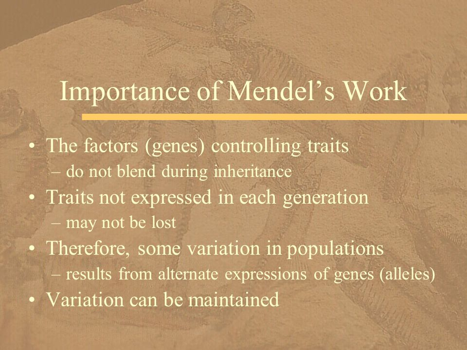Importance of Mendel's Work
