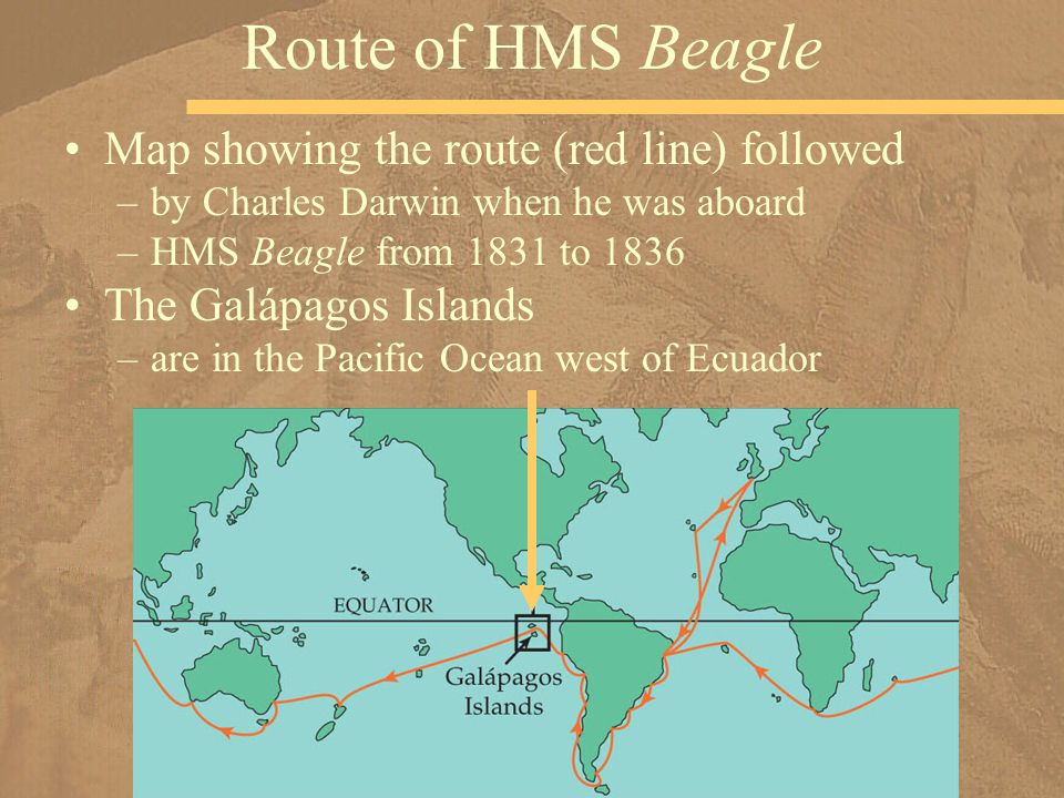 Route of HMS Beagle Map showing the route (red line) followed