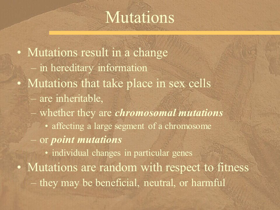Mutations Mutations result in a change