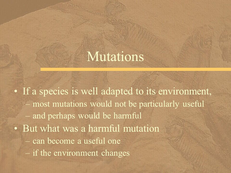 Mutations If a species is well adapted to its environment,