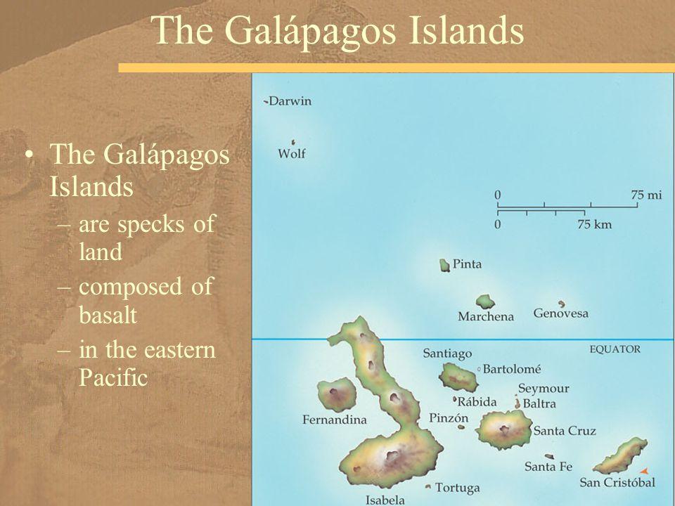 The Galápagos Islands The Galápagos Islands are specks of land