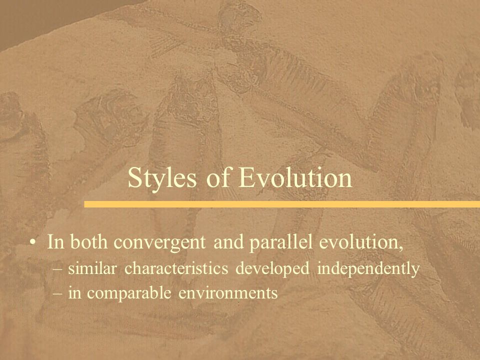 Styles of Evolution In both convergent and parallel evolution,