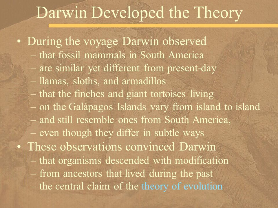 Darwin Developed the Theory