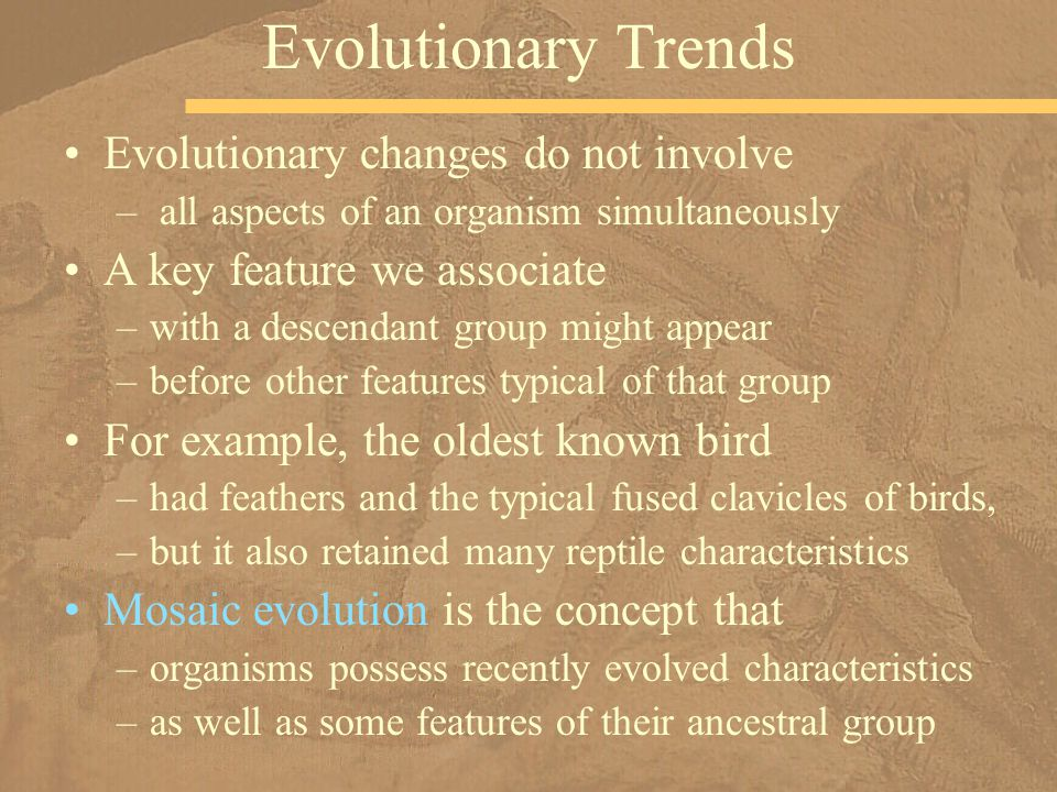 Evolutionary Trends Evolutionary changes do not involve