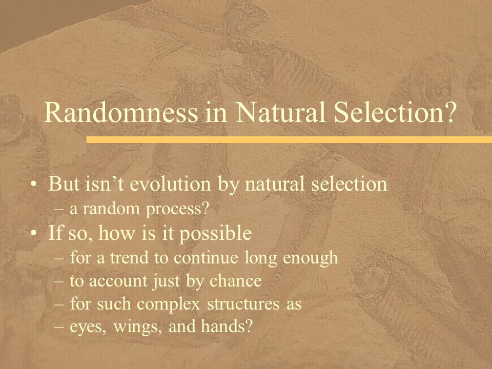 Randomness in Natural Selection
