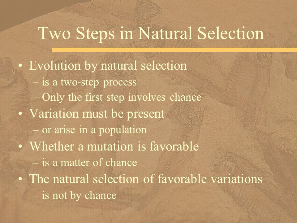 Two Steps in Natural Selection