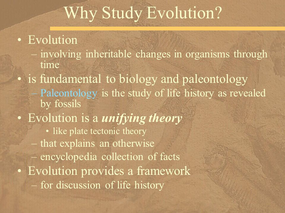 an analysis of paleontology and its explanation of evolution Paleontology is a field of biology, but its development has been closely tied to contributed to paleontology with his explanation of how the stoniness of in 1944 george gaylord simpson published tempo and mode in evolution, which used quantitative analysis to show that the fossil.