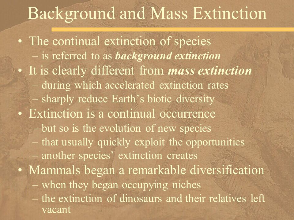Background and Mass Extinction