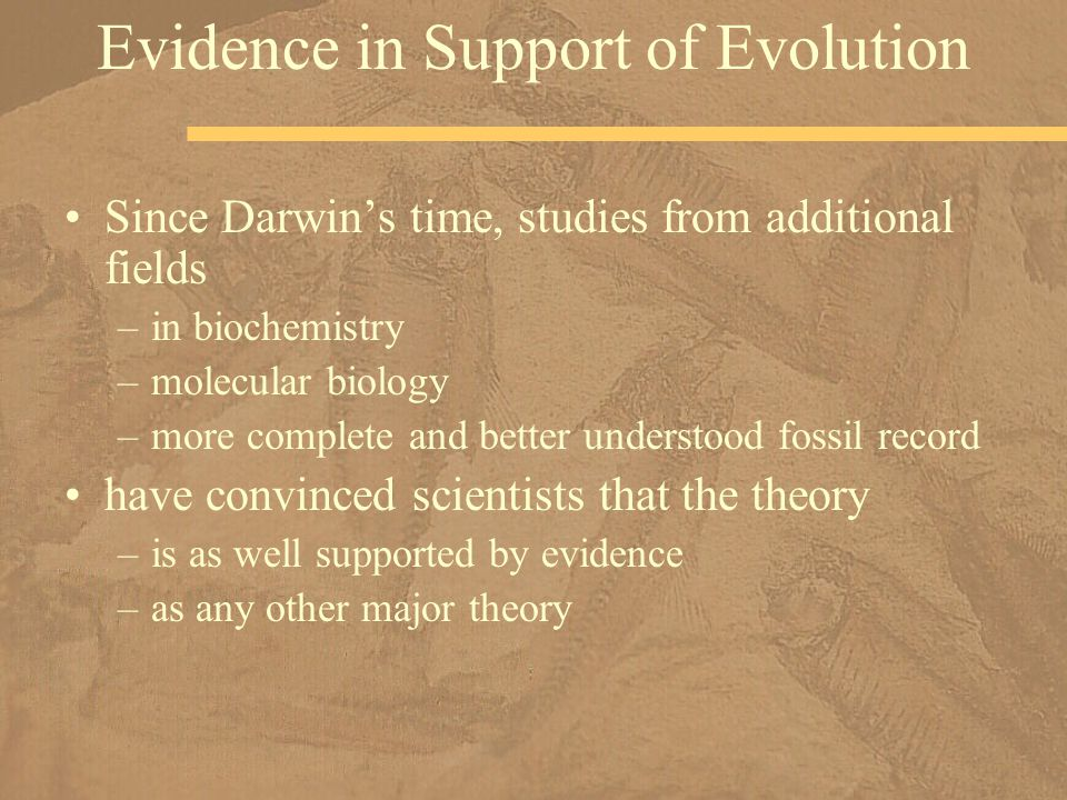 Evidence in Support of Evolution