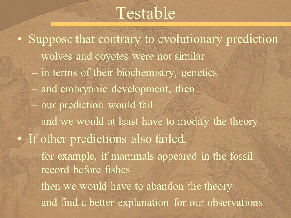 Testable Suppose that contrary to evolutionary prediction