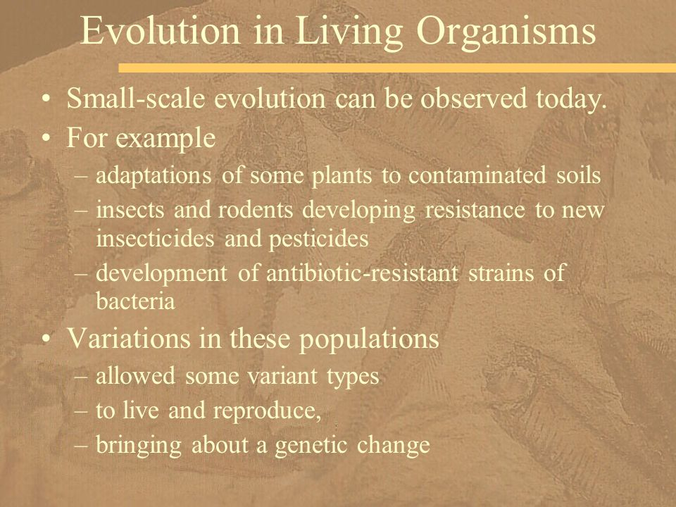 Evolution in Living Organisms