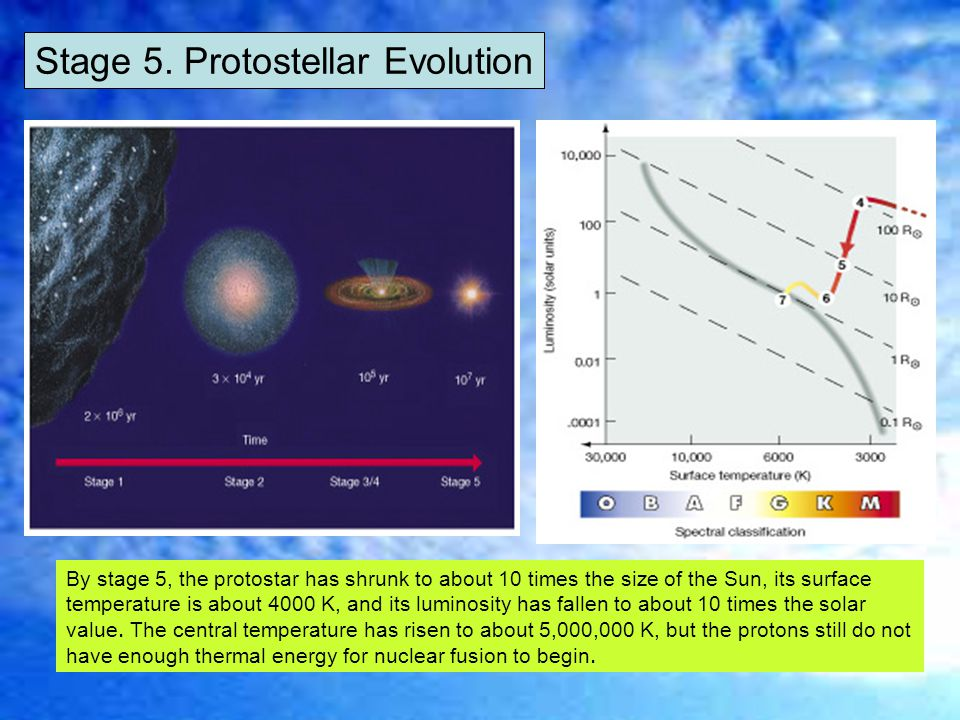 Stage 5. Protostellar Evolution