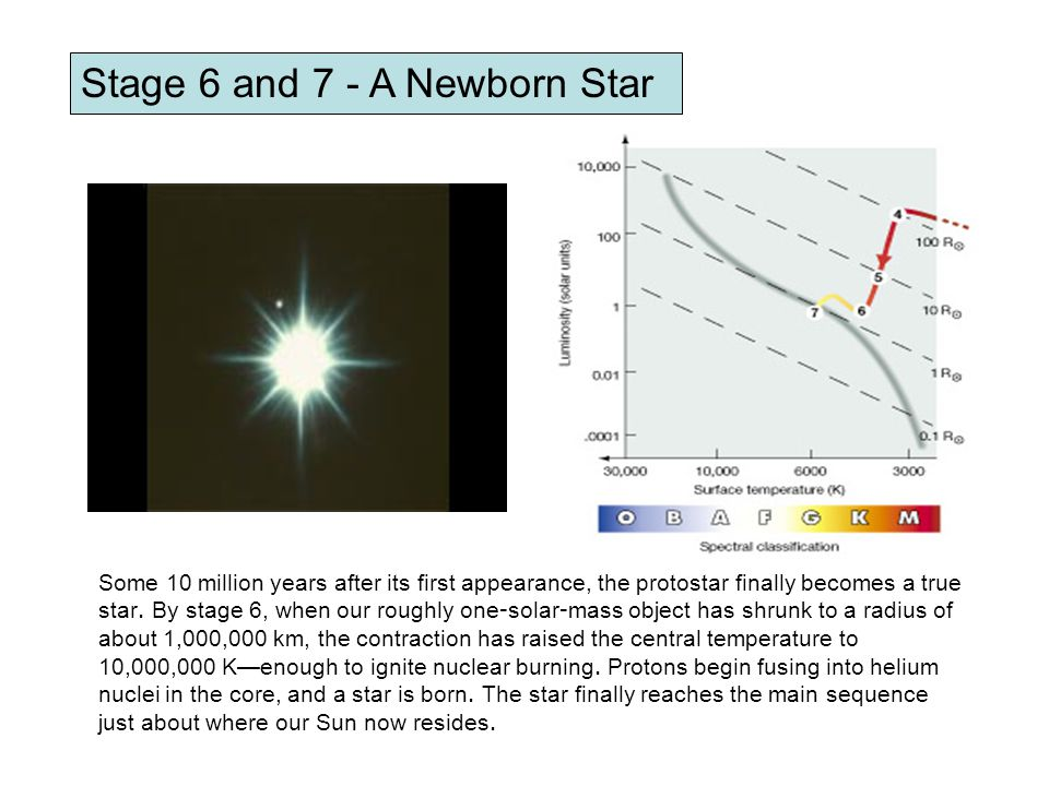 Stage 6 and 7 - A Newborn Star