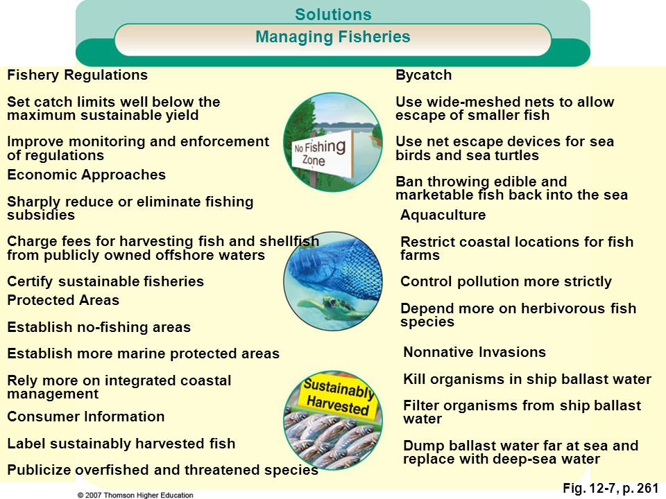 Solutions Managing Fisheries Fishery Regulations