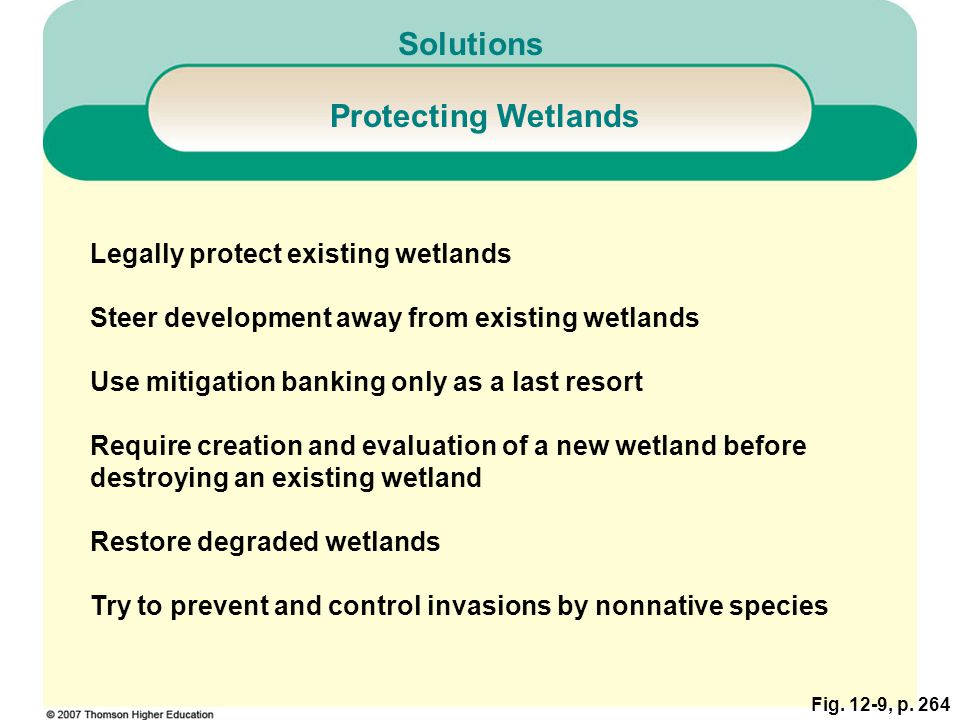 Solutions Protecting Wetlands Legally protect existing wetlands