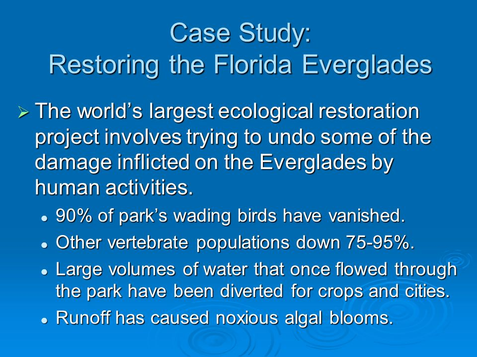 Case Study: Restoring the Florida Everglades