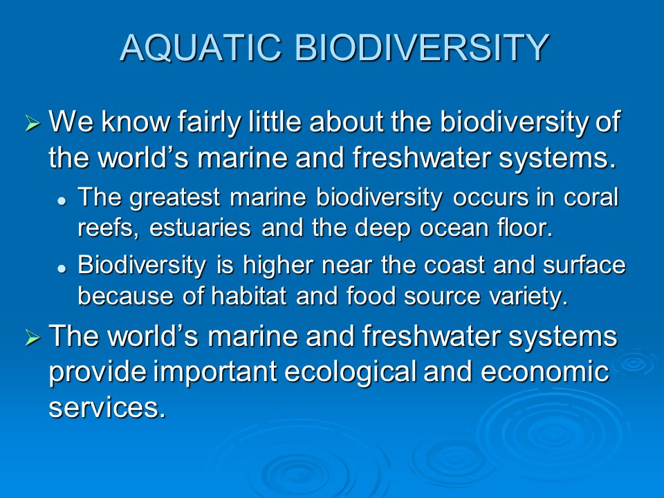 AQUATIC BIODIVERSITY We know fairly little about the biodiversity of the world's marine and freshwater systems.