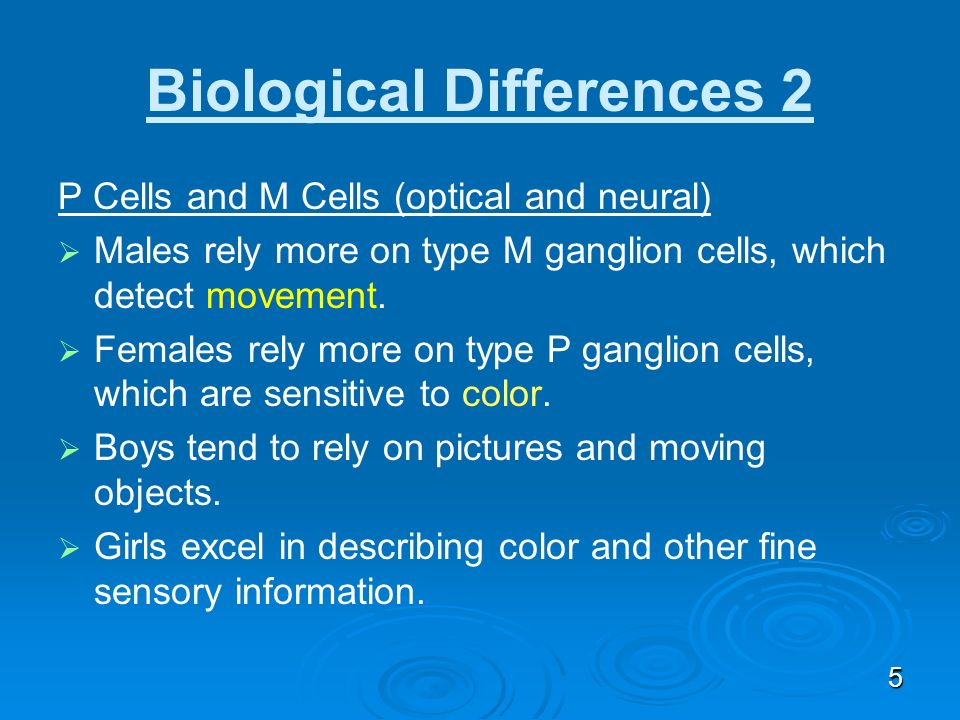 Biological Differences 2