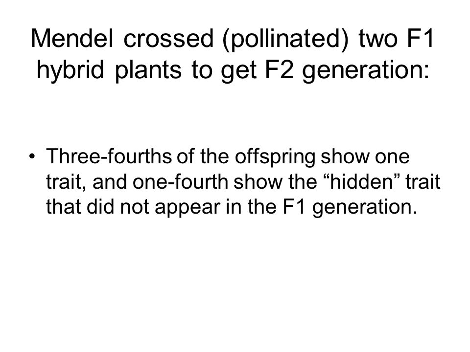 Mendel crossed (pollinated) two F1 hybrid plants to get F2 generation: