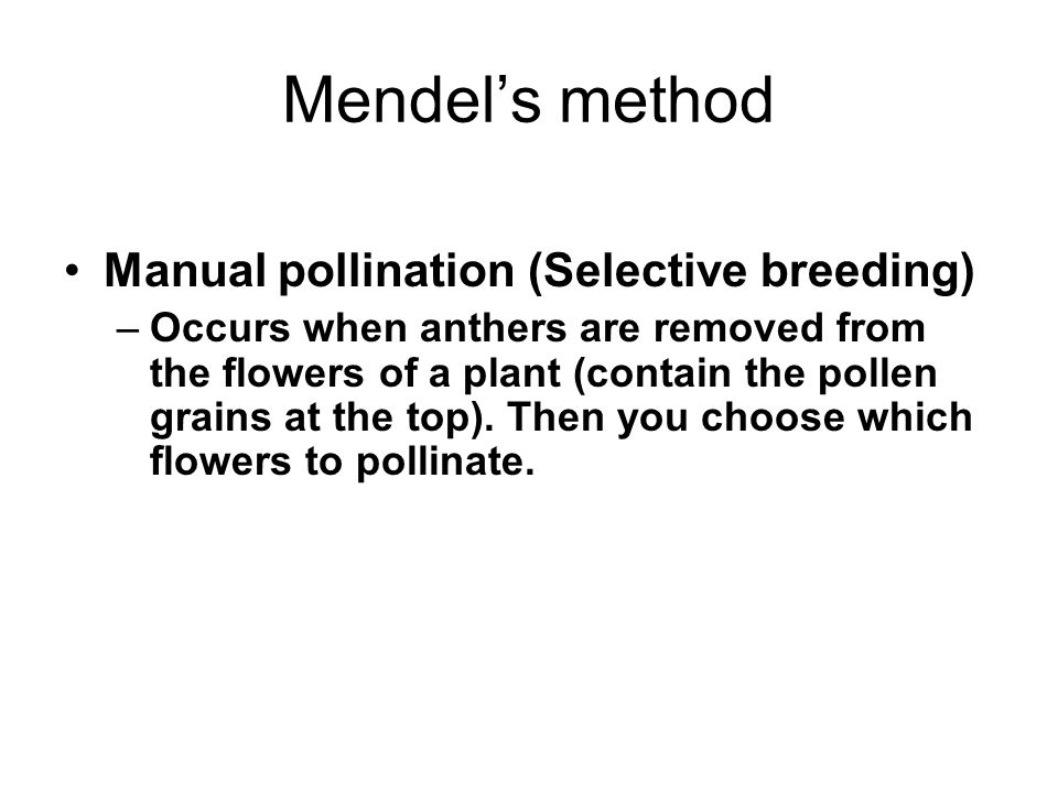 Mendel's method Manual pollination (Selective breeding)