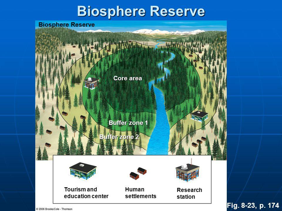 Biosphere Reserve Fig. 8-23, p. 174 Biosphere Reserve Core area