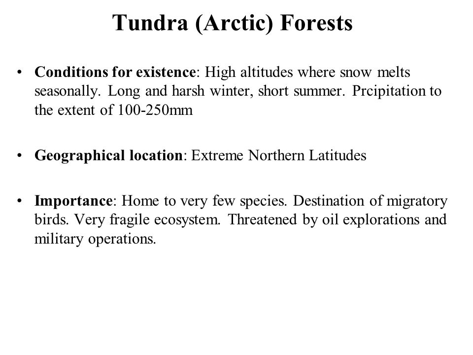 Tundra (Arctic) Forests