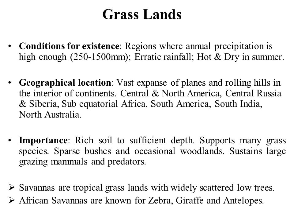 Grass Lands Conditions for existence: Regions where annual precipitation is high enough (250-1500mm); Erratic rainfall; Hot & Dry in summer.