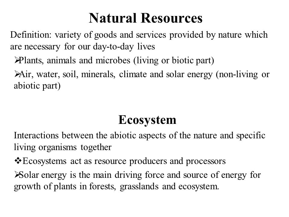 Natural Resources Ecosystem