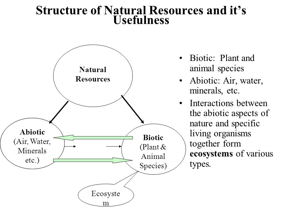 Structure of Natural Resources and it's Usefulness