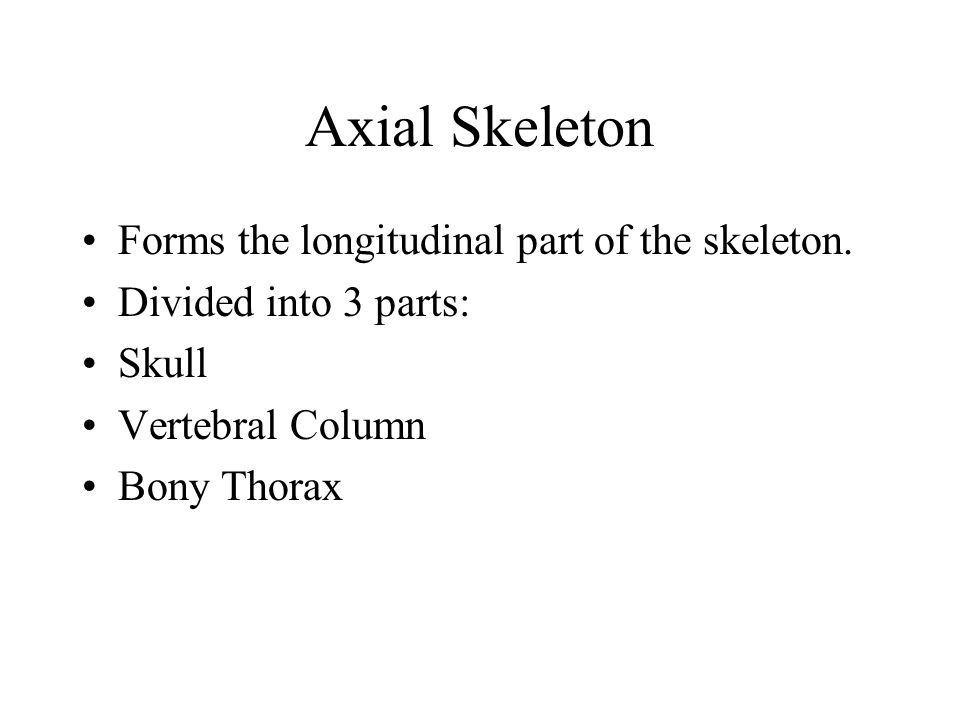 Axial Skeleton Forms the longitudinal part of the skeleton.