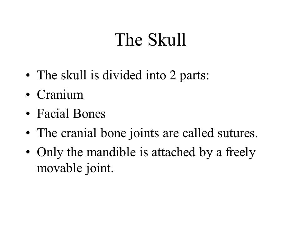 The Skull The skull is divided into 2 parts: Cranium Facial Bones