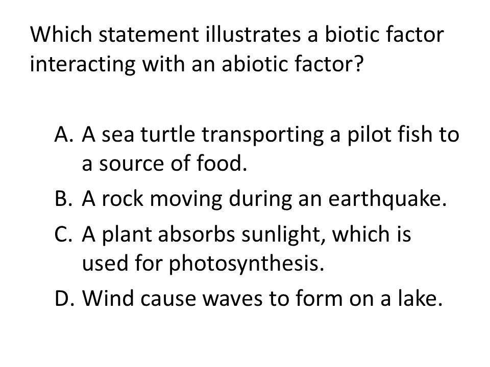 Which statement illustrates a biotic factor interacting with an abiotic factor