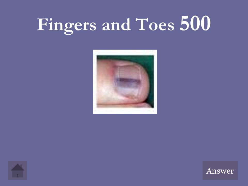 Fingers and Toes 500 Answer