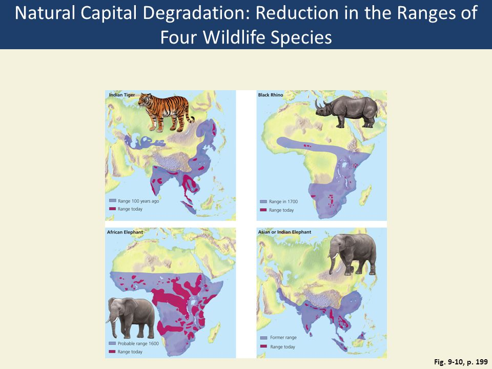 Natural Capital Degradation: Reduction in the Ranges of Four Wildlife Species
