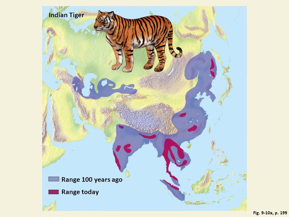 Indian Tiger Range 100 years ago Range today