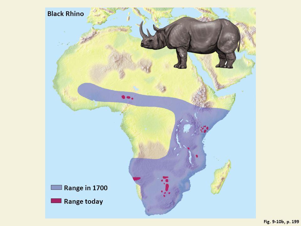 Black Rhino Range in 1700 Range today