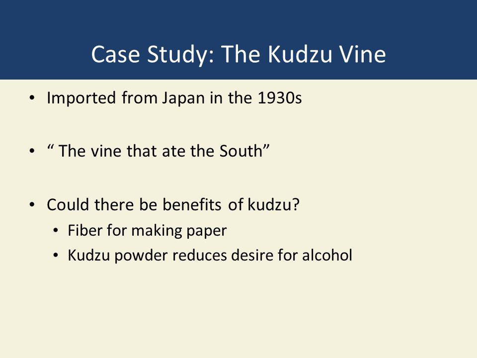 Case Study: The Kudzu Vine