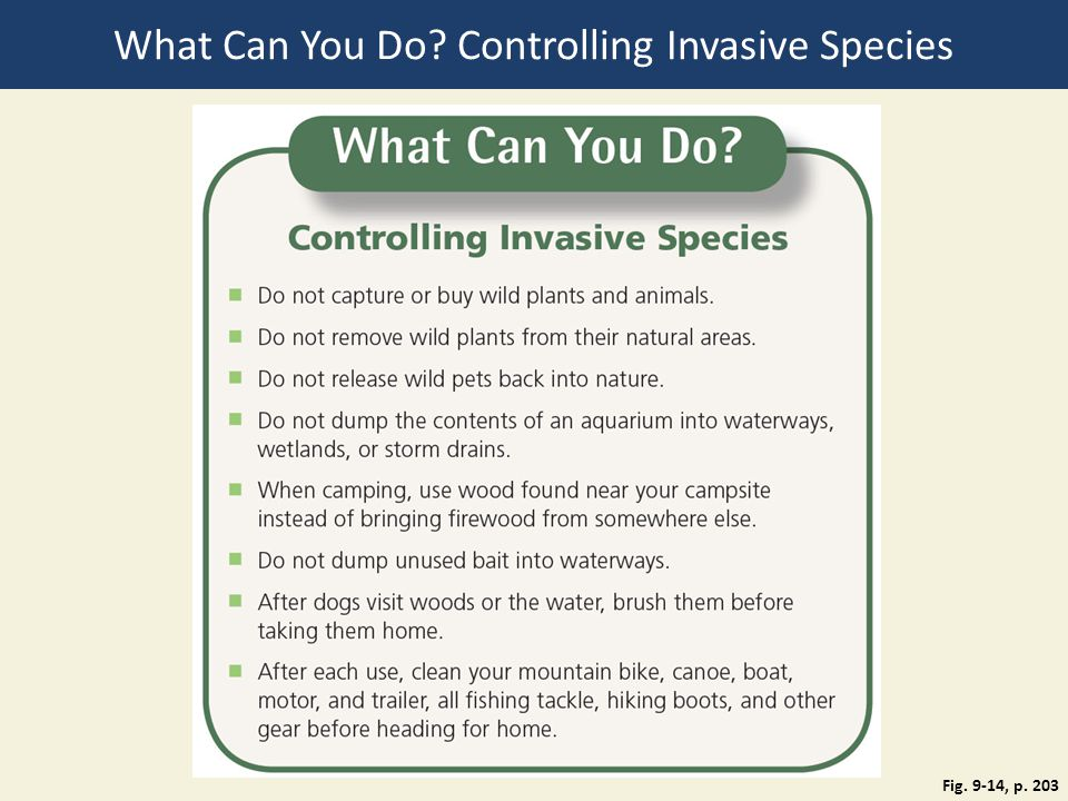 What Can You Do Controlling Invasive Species