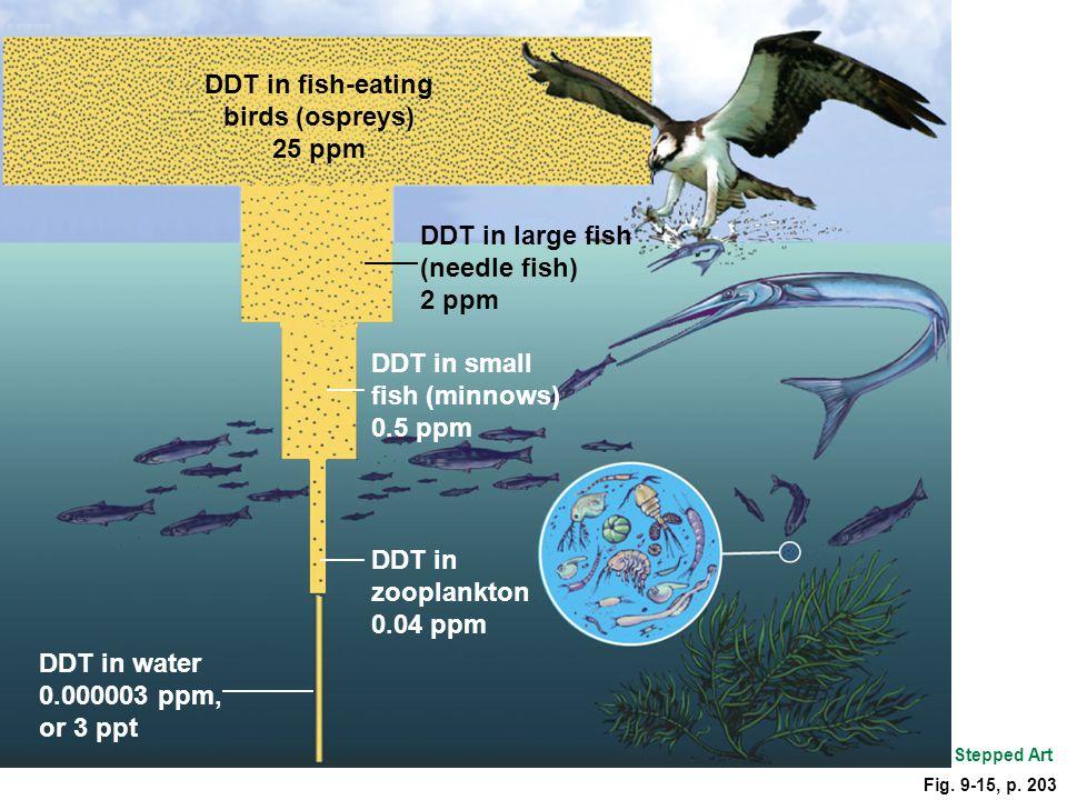 DDT in fish-eating birds (ospreys)