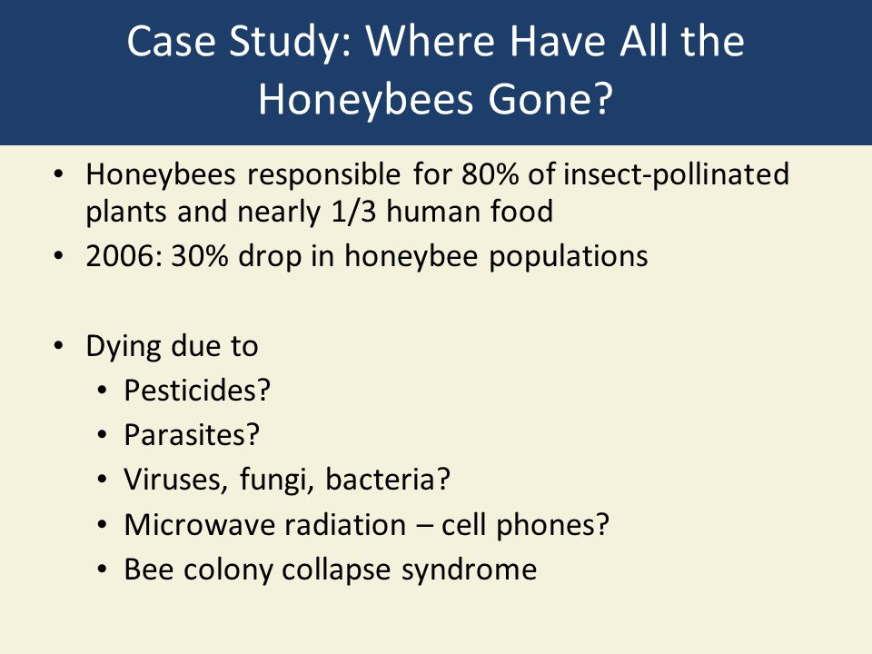 Case Study: Where Have All the Honeybees Gone