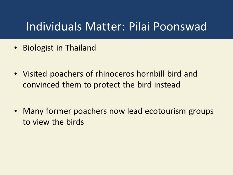 Individuals Matter: Pilai Poonswad