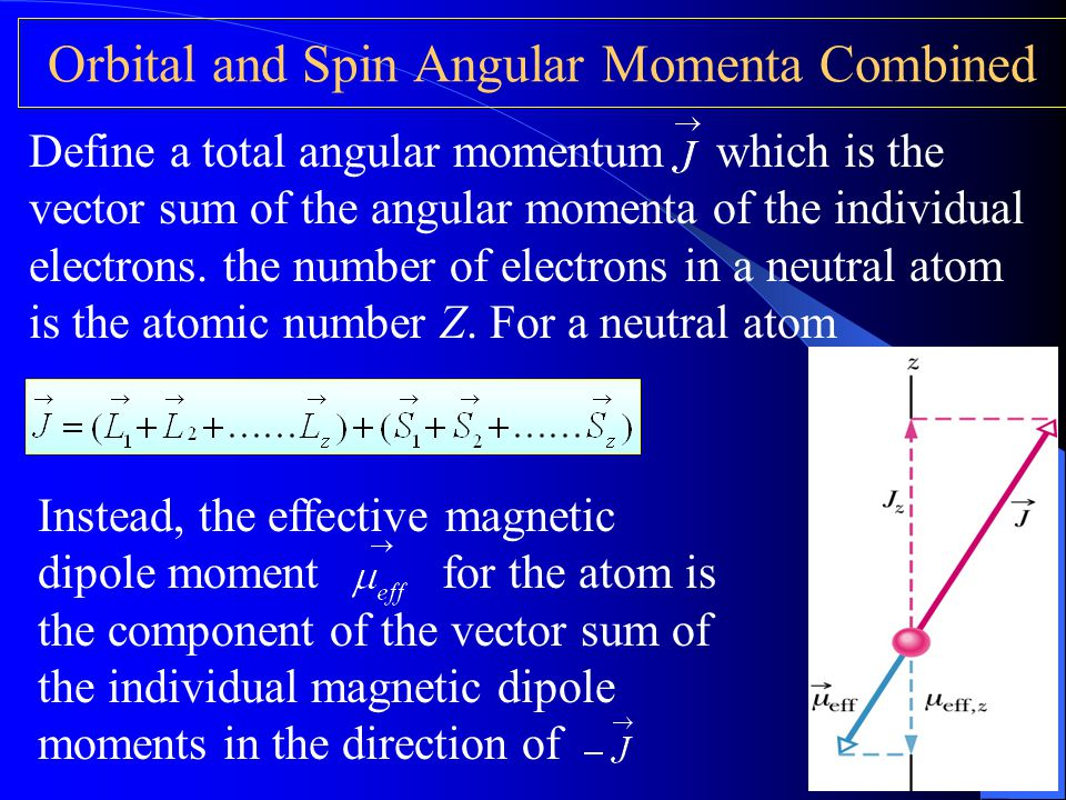 Orbital and Spin Angular Momenta Combined