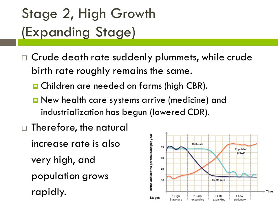 Stage 2, High Growth (Expanding Stage)