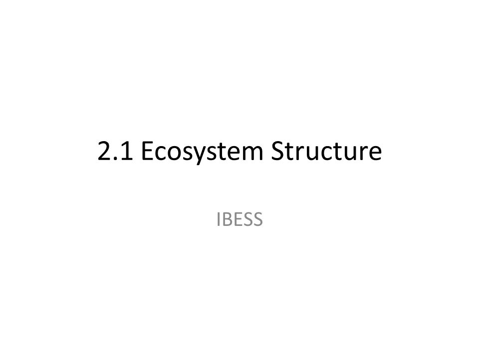 2.1 Ecosystem Structure IBESS