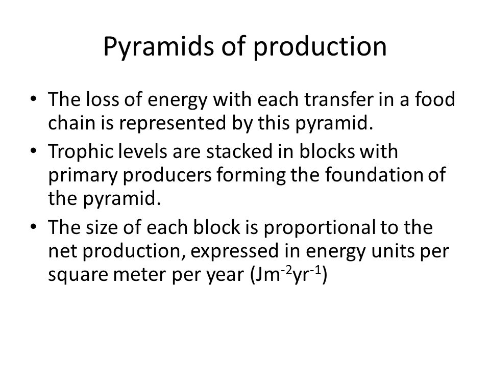 Pyramids of production
