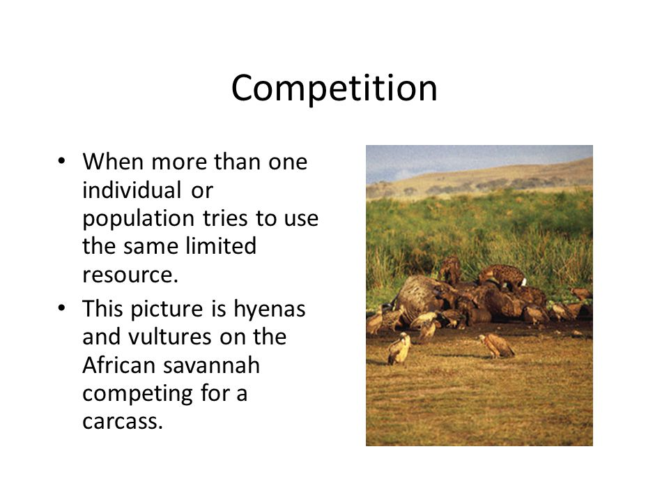 Competition When more than one individual or population tries to use the same limited resource.