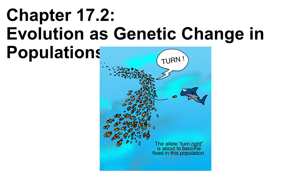 Chapter 17.2: Evolution as Genetic Change in Populations
