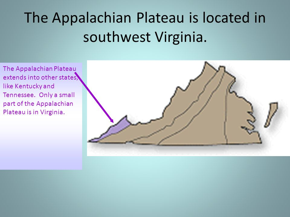 The Appalachian Plateau is located in southwest Virginia.