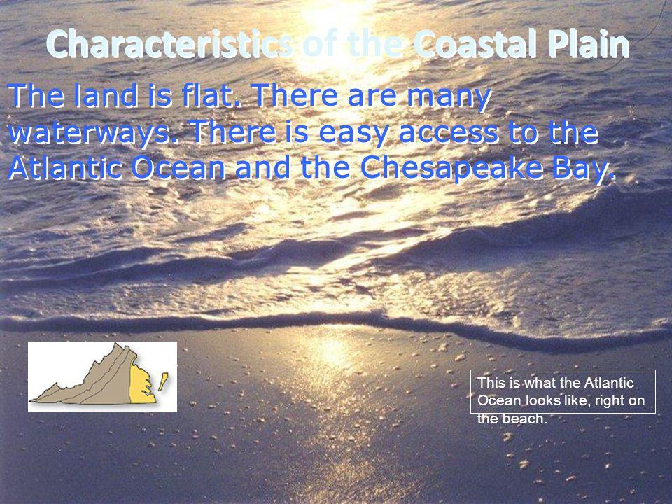 Characteristics of the Coastal Plain